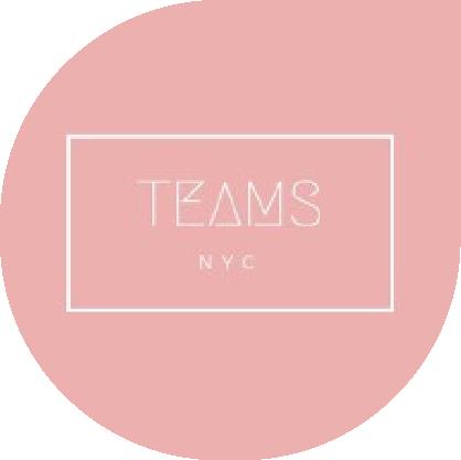 Teams NYC sponosor-02[2]